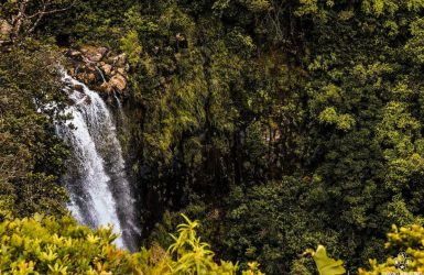 South Mauritius tour waterfall